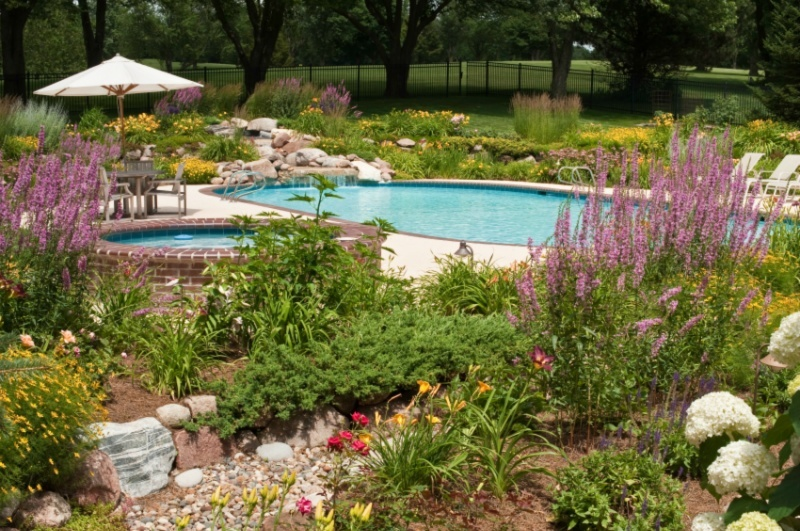 Four of our favorite swimming pool landscaping ideas for Pool landscape design ideas