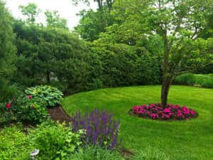 Beautiful Landscape With Flower Beds and Hedges