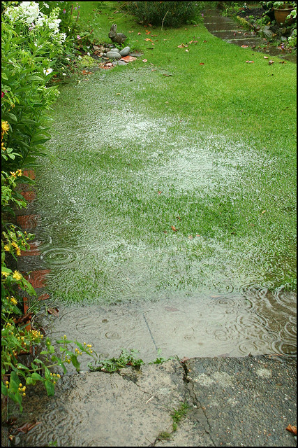Poor Drainage Around A House Can Damage Its Foundation