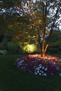 outdoor lighting landscape lighting walkways pathways