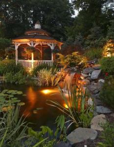 lighting will transform backyard water features